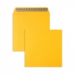 Koperty kolorowe żółte...