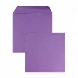 Koperty kolorowe fiolet...